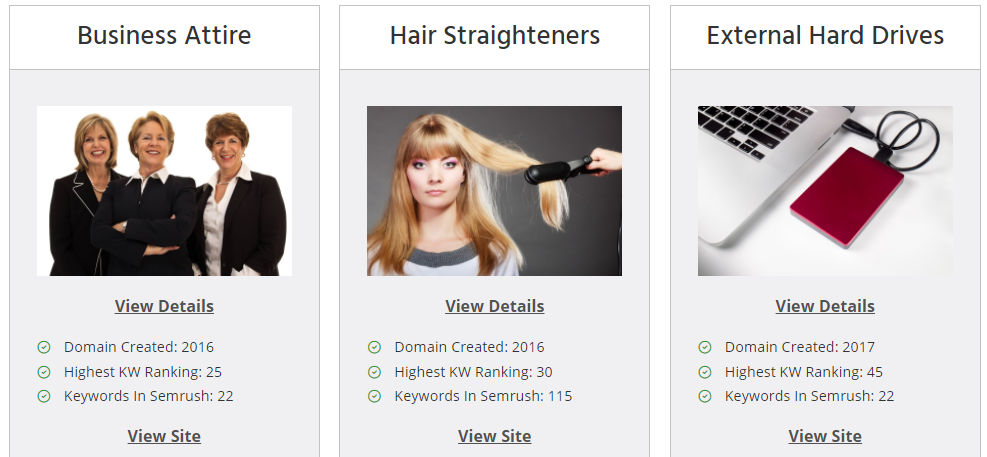 established website business for sale