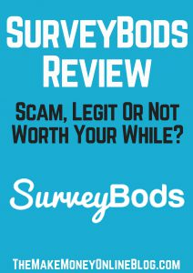 surveybods review