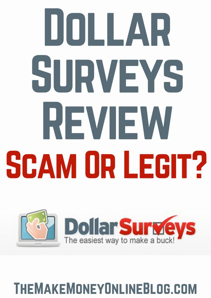 dollar survey review