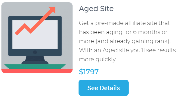 buy an aged site