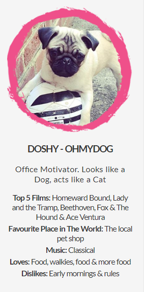 doshy the dog