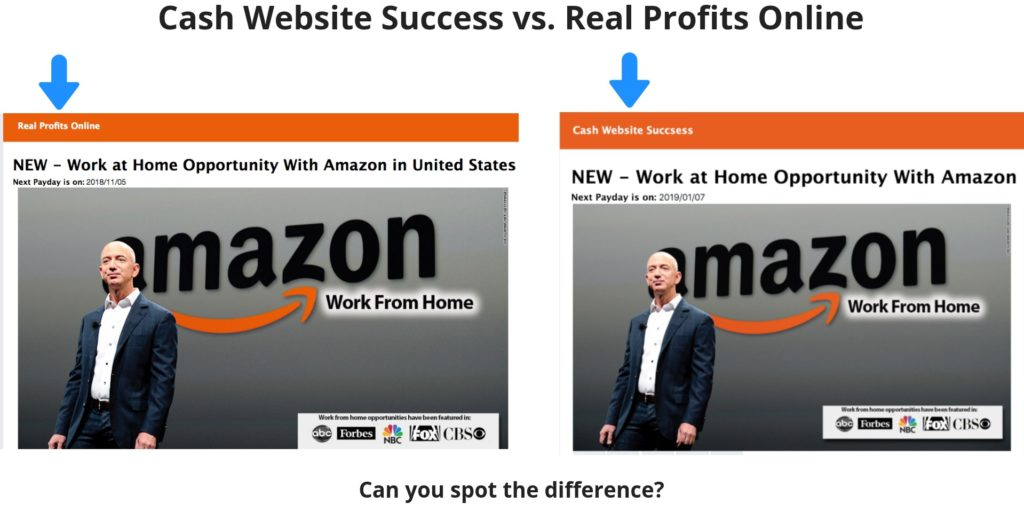 cash website success versus real profits online scams