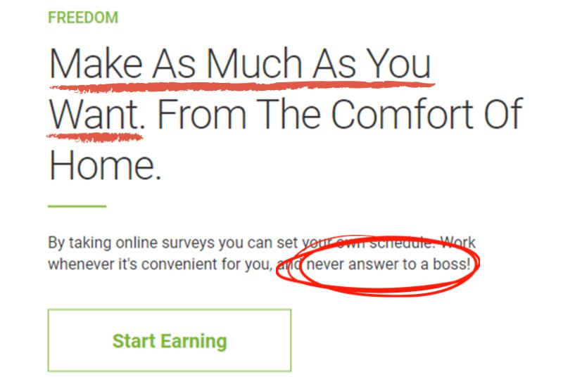 make money with survey freedom