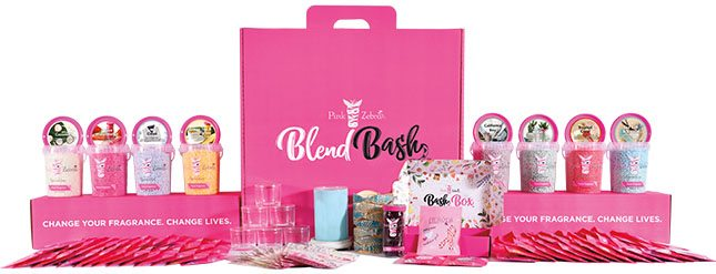 becoming a pink zebra consultant starter kit