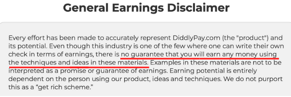 DiddlyPay Income Disclaimer
