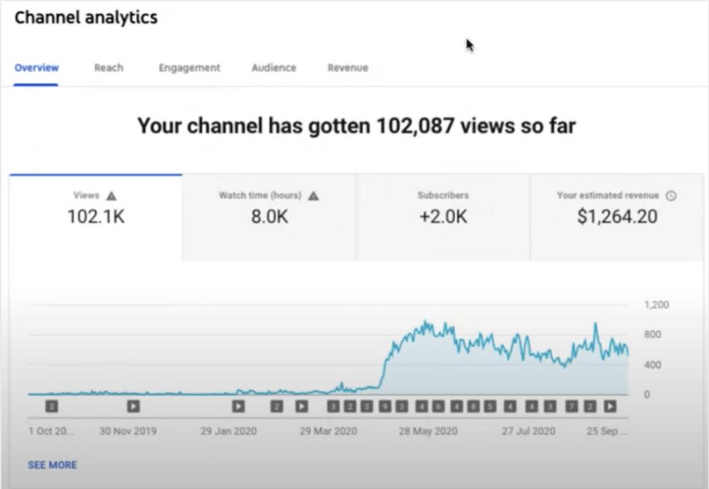 Simple Traffic Blueprint Student YouTube Stats